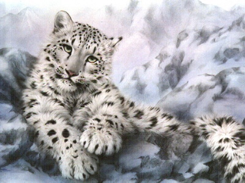 external image Snow%20Leopard%20Wallpaper.jpg